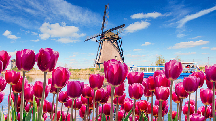 Day Trip to Garden of Europe - Keukenhof -CANCELLED